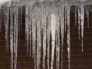 icicle_ice_cold